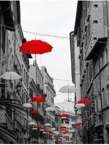 quadro-rua-seca
