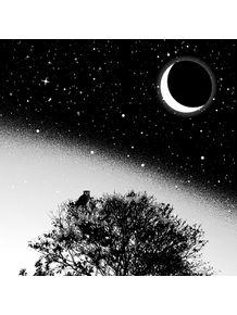 quadro-noite-de-luar
