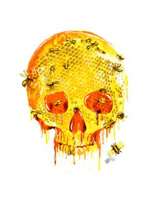 quadro-honey-skull