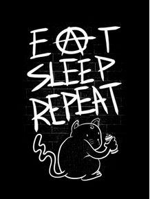 quadro-eat-sleep-repeat