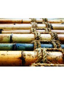 quadro-bambu-tt