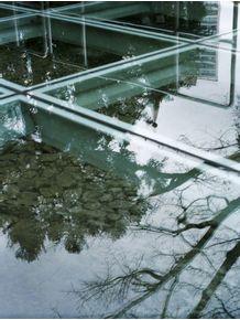 quadro-geometria-refletida
