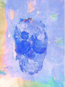 quadro-skull-full-5