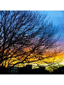 quadro-por-do-sol-com-todas-as-cores