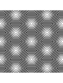 quadro-hextex-concentrico