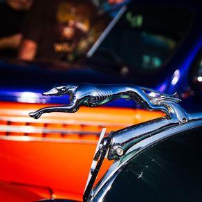 quadro-vintage-ford-v8-logo-greyhound