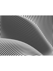 quadro-paralelas-curvilineas-4