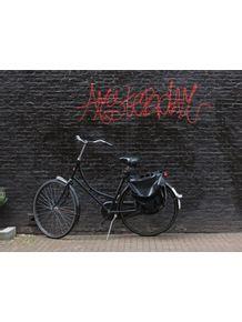 quadro-bicicleta-amsterdam
