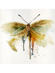 quadro-butterfly--laranja