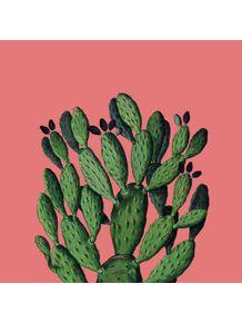 quadro-divinum-coralina