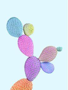 quadro-color-cactus