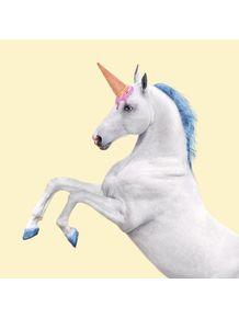 quadro-unicorn-ice