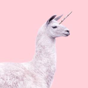 quadro-unicorn-lama