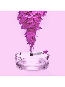 quadro-pink-smoke