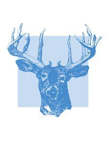 quadro-cervo-blue