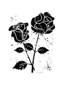 quadro-roses-black-01