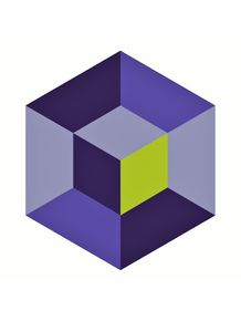 quadro-cubo-optical