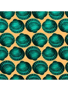 quadro-shell-color-ii