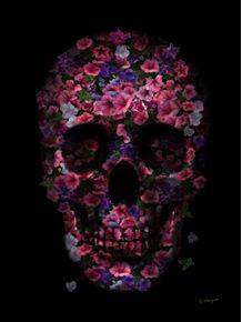 quadro-skull-flower-purple