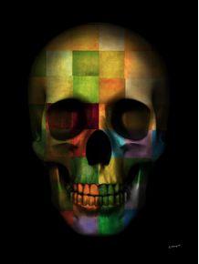 quadro-skull-colors-graphics