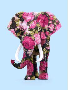 quadro-floral-elephant