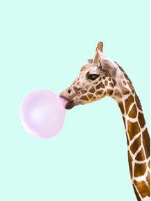 quadro-bubblegum-giraffe