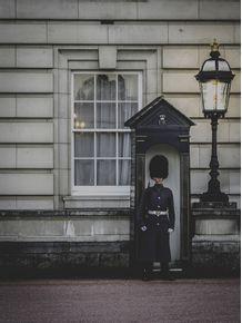 quadro-royal-guard