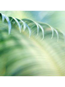 quadro-greenery