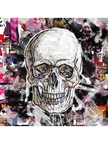 quadro-cropped-skull