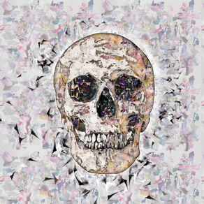 quadro-cropped-skull-2