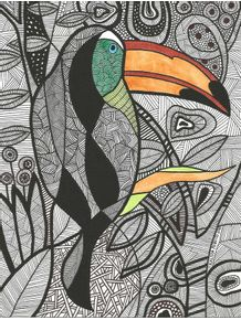 quadro-tucano-brasil