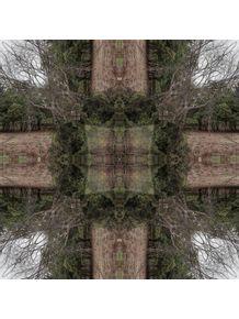 quadro-woods-mandala