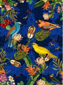 quadro-aves-do-paraiso