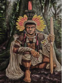 quadro-indio-enawene-nawe
