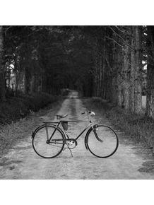 quadro-bicicleta-antiga-no-caminho