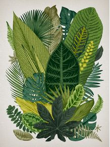quadro-botanico-i