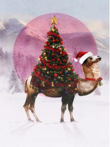 quadro-santa-camel