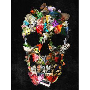 quadro-new-fragile-skull
