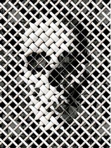 quadro-wicker-skull