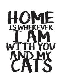 quadro-home-you-cats