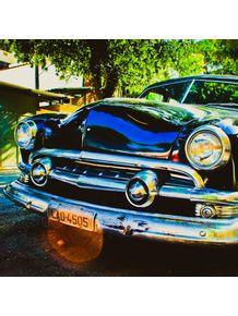 quadro-bull-dog-car-2