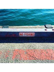 quadro-no-fishing