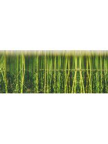 quadro-pano-grass