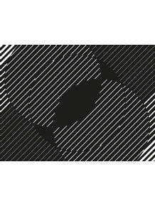 quadro-campo-geometrico