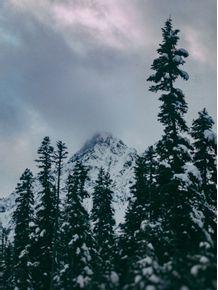 quadro-cascade-winter-mountain