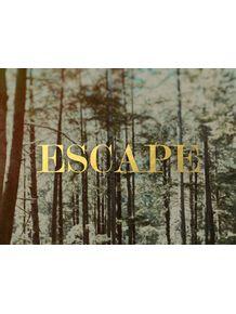 quadro-escape-forest