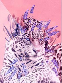 quadro-jaguar-ts