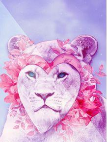 quadro-lioness-ts