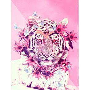 quadro-tiger-ts