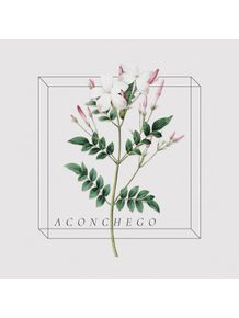 quadro-antique-flora-aconchego